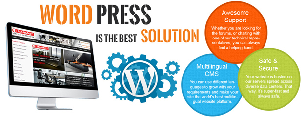 wordpress services,wordpress website development services,wordpress website builder